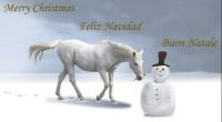 God Jul häst
